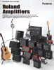 Roland Amp Catalog 2010