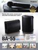 BA-55 Leaflet