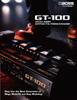 GT-100 Leaflet